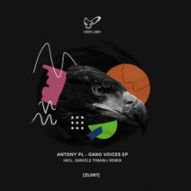 Antony Pl, Daniele Travali - Gang Voices EP