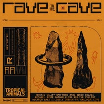 Nero Zang, Mystic Valley, Gaiden, Ennio Colaci, Elisa Bee, Michael Byrne, The Analogue Cops, Ricardo Baez, The Cyclist, SPO - Rave in the Cave, Vol. 1