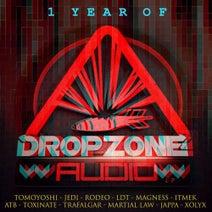 Tomoyoshi, DJ Rodeo, ATB, Trafalgar, Toxinate, Jedi, Itmek, Martial Law, LDT, Magness, Jappa, Xolyx - 1 Year Of Dropzone Audio LP