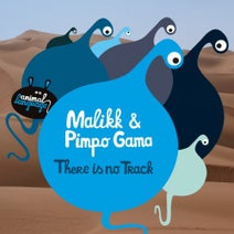 Pimpo Gama, Malikk - There Is No Track