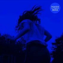 Lemandorle - Le ragazze (Remix)