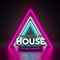 Ioshi Takashi, Guy Goldstone, Solid Groove, Rich Fox, Lenny Jordan, Bar Grovers, Playaman, Hotel 44, K Zone, Michel Poison, Care Yon - The Temple of House (The Best Selection)
