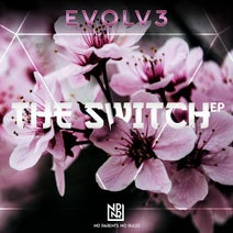 Evolv3 - The Switch EP