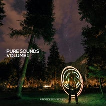 Will Fast, 2 Slices - Pure Sounds (Volume 1)