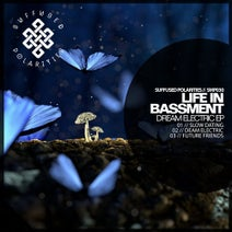 Life in Bassment - Dream Electric