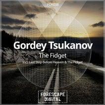 Gordey Tsukanov - The Fidget