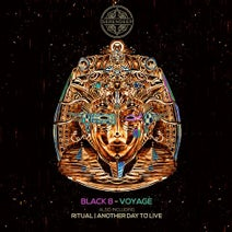 Black 8 - Voyage
