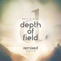 Basil O'Glue, Gai Barone, Tim Penner, Styller, Forerunners, 8Kays, White Leaf - Depth of Field (Remixes, Pt. 2)