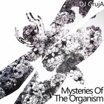 DJ Gruja, Benamer - Mysteries of the Organism