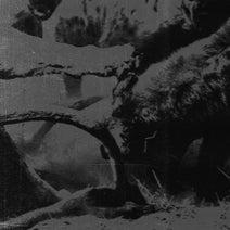 EAS, Sluhg, Dep Affect - Orange County Acid Remixed