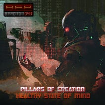 P.O.C. - Healthy State of Mind