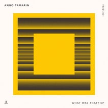 Ango Tamarin - What Was That?