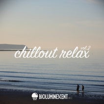 Vax Grooves, Pure Relaxation, Lounge Cafè, Slow Lovers, Selected M, Vario Molante, Ghetto Soul Selection, The Trax, Atmospherical 45, Key Of Dreams, Big Beat Bass, Polar X, Zanna, Anthony Cool, Suspended, Mamo DJ, Y.G. - Chillout Relax Vol. 2