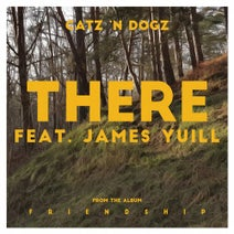 Catz 'n Dogz, James Yuill, Michael Mayer, Terr - There feat. James Yuill