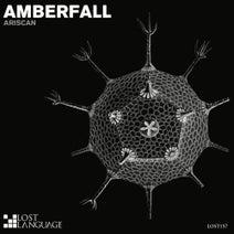 Ariscan, Chris Salt - Amberfall