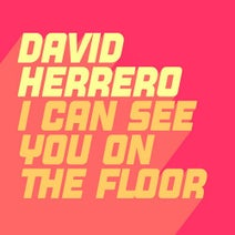 David Herrero - I Can See You On The Floor