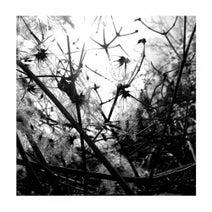 Joachim Spieth - Irradiance