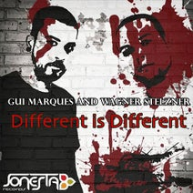 Gui Marques, Wagner Stelzner, L.O.O.P - Different is Different