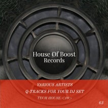 The Sound Brother's (ITA), Monocat, Denoom, Joe De Renzo, Migue Boy, Jona Marrero - Q-Tracks For Your Dj Set Tech House 10