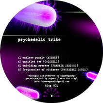 Aubrey, Gotshell, Unchained Souls, Frankie Serious - Psicheledic Tribe