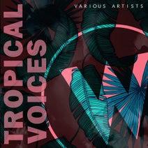 Luis Alberto, Joc House, Joseph Gaex, Voiceless, Buer, Furfur, Andres Luque, Ruben Sanchez - Tropical Voices