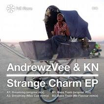 Andrewz Vee & KN, Max Cue, Mr.Flavour - Strange Charm EP