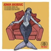 Adnan Jakubovic, Nishan Lee, AudioStorm - The Awakening