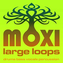 Vortex - Moxi Large Loops Volume 11