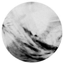 Ajtim, Northern Structures, Mike Parker, Svreca - Faynot EP