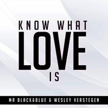 Mr Black&Blue&Wesley Verstegen - Know What Love Is