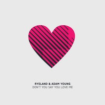 Ryeland, Adam Young - Don't You Say You Love Me