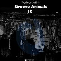 Alessio Frino, Pavzo, Deophonik, J Matin, Flavio MP, South Tribe, TEODORO, Daniel Kazuo, Lukaa, Young Hove - Groove Animals 13
