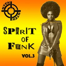 Stex, J.Alba, Captive Logic - Spirit Of Funk Vol.3