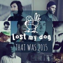 Demarkus Lewis, Pete Dafeet, Sek, Harry Wolfman, Laurence Guy, Edviq, JammHot, Charles Webster, Mountal, Nacho Marco, Manuel Tur - That Was 2015: Lost My Dog Records