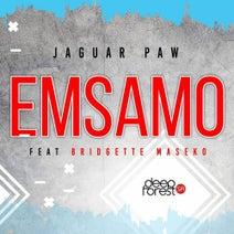 Jaguar Paw, Bridgette Maseko - Emsamo