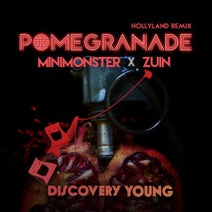 Hollyland, MINIMONSTER (KOR), Zuin - Pomegranade (Hollyland Remix)