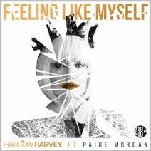 Harlow Harvey, Stonebridge, Tommy Mc, Mostreal, RYZY, Jason Plewinski - Feeling Like Myself