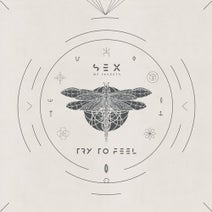 Sex Of Insects - Try To Feel