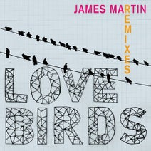 Dan Morgan, James Martin, Nupacific - Lovebirds (Remixes)