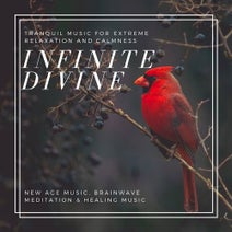 Infinite Divine (Tranquil Music For Extreme Relaxation And Calmness