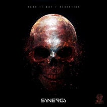 Synergy - Turn It Out / Radiation