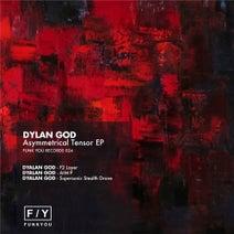 Dylan God - Asymmetrical Tensor
