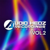 Allan E, Audio Hedz, Tamerax, Kina Forney, Rattez, Audox, Bassik, Technikal, Alex Burn, Dirty Harry, Costa Pantazis - Audio Hedz Recordings The Best Of, Vol. 2