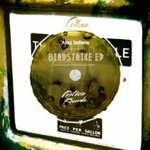 Alex Sellens - Birdstrike EP
