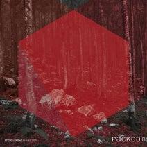 Steve Lorenz - Viking 2 EP