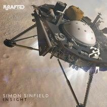 Simon Sinfield - Insight