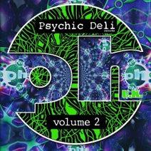 Nervasystem, Messiah, Subcouds, Multiplex, Tromesa, Krisb, Lumen, Vibrasphere, In-Sect, Mumbo Jumbo, Shakta, Sephalopod - Psychic Deli Volume Two