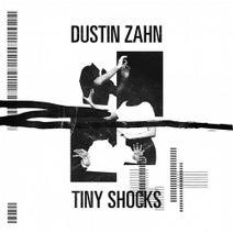 Dustin Zahn - Tiny Shocks