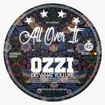 ozzi, Greco (NYC) - Do What You Like
