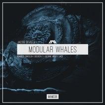 Jacob Seville, Juliane Wolf, DRKSLSH, Decker (CAN), DJ Jace - Modular Whales